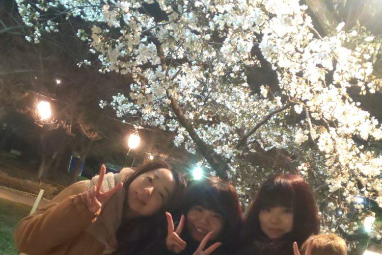 花見in亀城公園